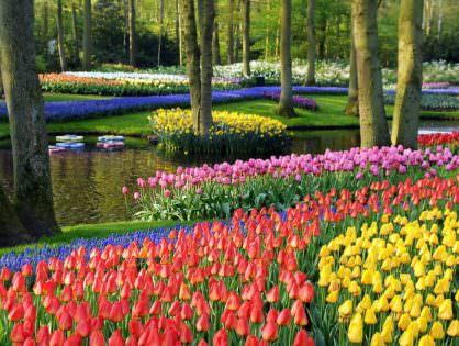 Голландия: первое знакомство